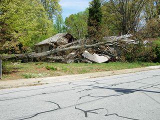 1316 Grove Street - 4-14-2011