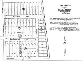The Cedars Property