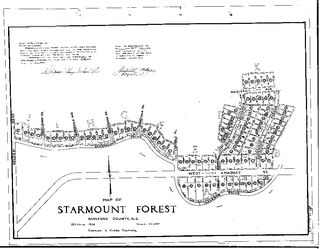 Starmount Forest Plat 1