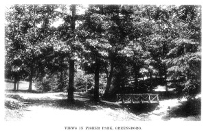 View_in_fisher_park
